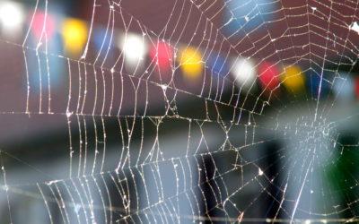 Web-Scraping using Batch and Iterative Macros