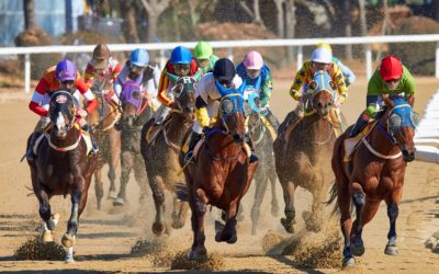 Dashboard Week Day 2 : Punting on Racehorses with Alteryx and Tableau