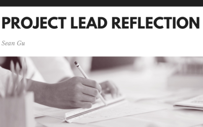 My Experience as a Project Lead – Part 2