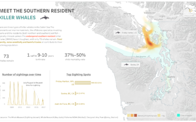 "Behind the scene: ""Meet the Southern Resident Killer Whales"" Tableau Viz"