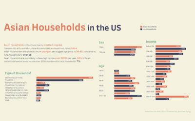 Dashboard Week Day 1 – Asian Households in the US