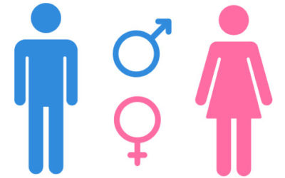 Batch Macro: How to find the gender of a person