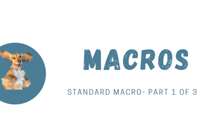 Alteryx Tip: What are Macros? And how are they useful to me? Part 1 of 3